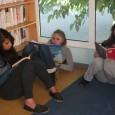 Romans, BD, Mangas, magazines … ont eu un franc succès pour cette première soirée de lecture au CDI. Grâce au partenariat avec la médiathèque de Beaumont-de-Lomagne, nous pouvons offrir aux […]