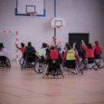 Vendredi 21 décembre 2018, au lycée professionnel Lestonnac à Beaumont de Lomagne a eu lieu la traditionnelle journée handisport. Organisée par quatre élèves de la classe de terminale du bac […]